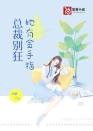 总裁小说TXT下载