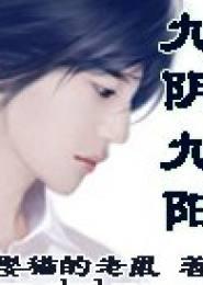 九阴九阳电子书下载