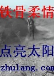 铁骨柔情电子书下载