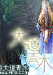 大道青木电子书下载