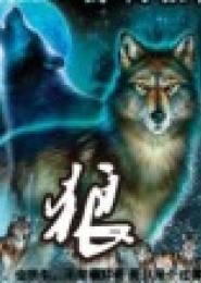 狼电子书下载
