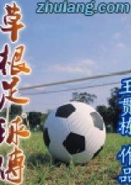 草根足球传电子书下载
