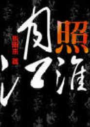 月照江淮电子书下载