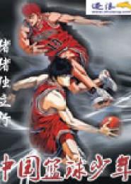 中国篮球少年电子书下载