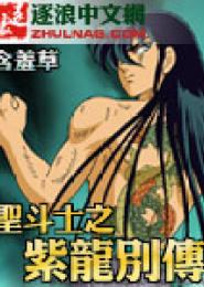 圣斗士之紫龙别传电子书下载