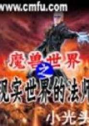 魔兽世界之现实世界的法师电子书下载