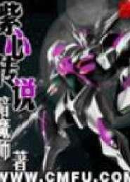 紫心传说电子书下载
