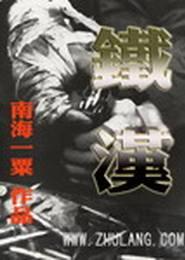 铁汉电子书下载