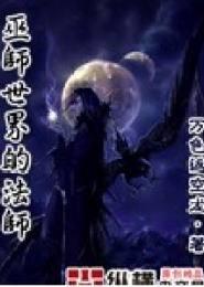 巫师世界的法师电子书下载