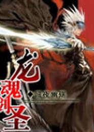 龙魂剑圣小说下载