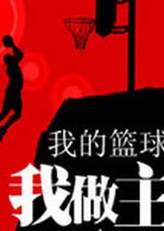 我的篮球我做主电子书下载