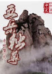 五岳独尊小说下载