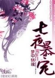 七夜暴宠小说下载
