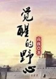 觉醒的野心小说下载
