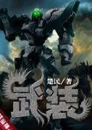 武装小说下载