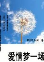 爱情梦一场小说下载