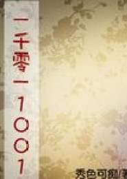 一千零一1001小说下载