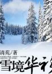 雪境华衫电子书下载
