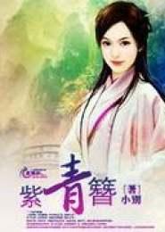 紫青簪电子书下载