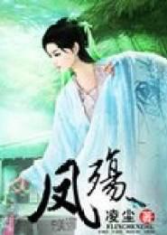 凤殇小说下载