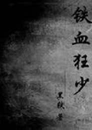 铁血狂少小说下载