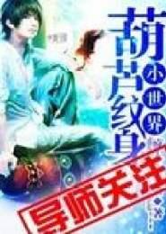 葫芦纹身小世界小说下载