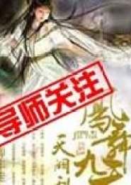 天阙乱,凤舞九天小说下载