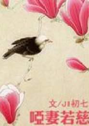 哑妻若慈小说下载