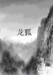 龙狐电子书下载