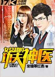 女总裁的功夫神医小说下载