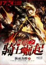 网游之骑士崛起小说下载