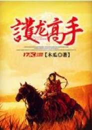 护龙高手小说下载