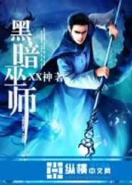 黑暗巫师小说下载
