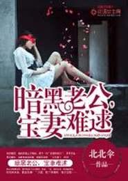 暗黑老公,宝妻难逑小说下载