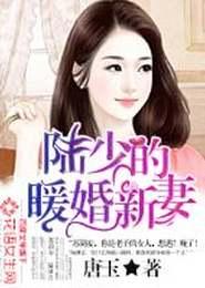 陆少的暖婚新妻小说下载