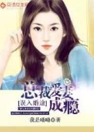 误入婚途:神秘总裁爱妻成瘾小说下载