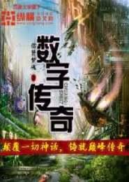 数字传奇小说下载