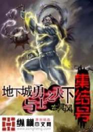 地下城与勇士之天下集结号小说下载