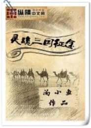 灵魂三国征途小说下载