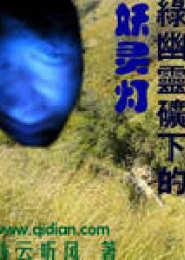 绿幽灵矿下的妖灵灯电子书下载