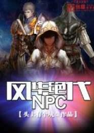 风华绝代NPC电子书下载