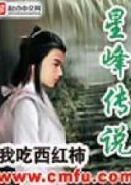 星峰传说电子书下载
