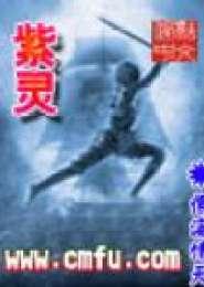 紫灵电子书下载