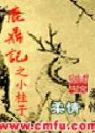 鹿鼎记之小桂子