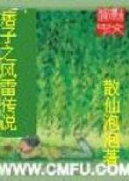 痞子之风雷传说电子书下载