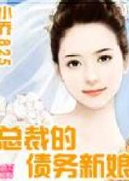 总裁的债务新娘电子书下载