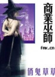 商业巫师小说下载