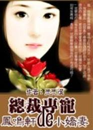總裁的專寵小嬌妻小說下載