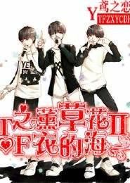 TF之薰衣草的花海Ⅱ
