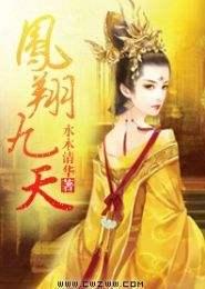 凤翔九天小说下载